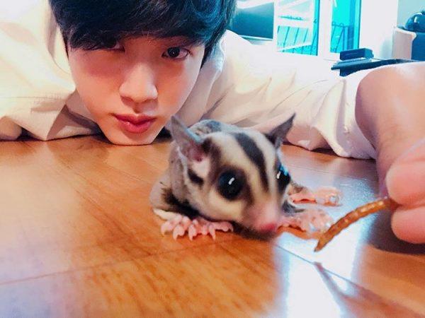 Check Out BTS Jin's Recent Quarantine Photos