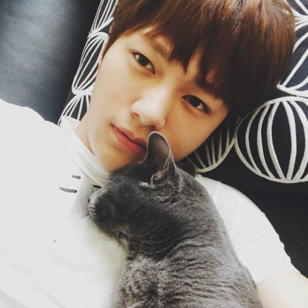 INFINITE L's Efforts To Support Abandoned Cats Are Revealed