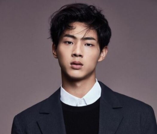 Actor Ji Soo Accused Of Severe School Bullying By Multiple Alleged Victims, Agency Makes Statement